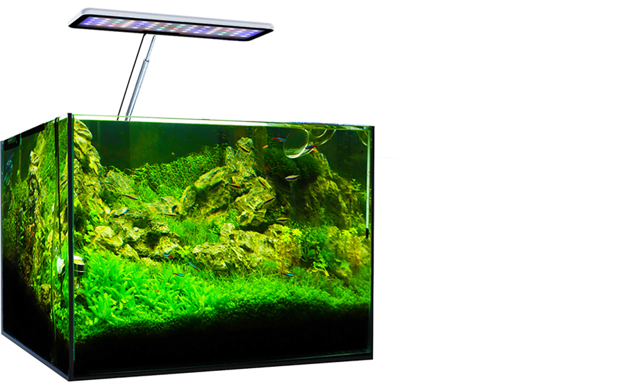 aqua cc planted - led aquarium light